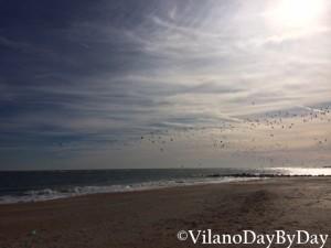 Vilano Beach -2- VilanoDayByDay