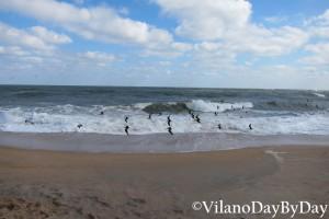 Vilano Beach -23- VilanoDayByDay