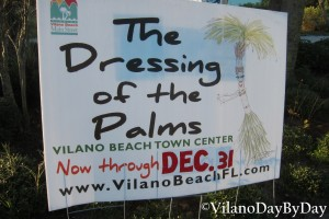 Vilano Beach - The Dressing of the Palms
