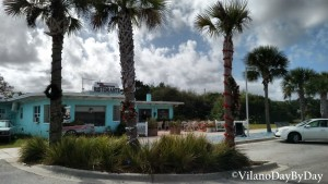 Vilano Beach - Dressing of the Palms - VilanoDayByDay - 16