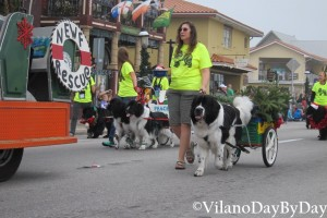 Saint Augustine - Christmas Parade -17- VilanoDayByDay