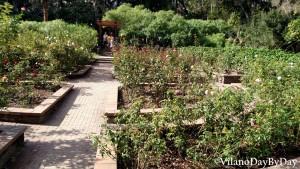Washington Oaks Gardens State Park -11- VilanoDayByDay