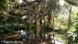 Washington Oaks Gardens State Park -16- VilanoDayByDay