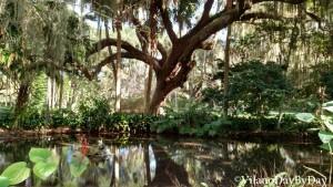 Washington Oaks Gardens State Park -19- VilanoDayByDay