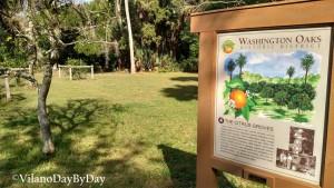 Washington Oaks Gardens State Park -20- VilanoDayByDay