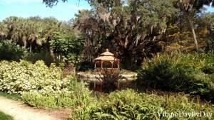 Washington Oaks Gardens State Park -9- VilanoDayByDay